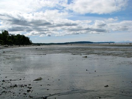 Captain Cook State Recreation Area at Low Tide