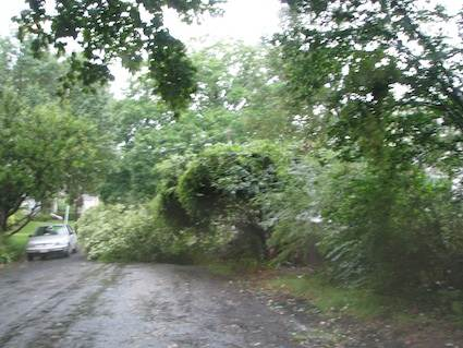 Light Damage from Hurricane Irene