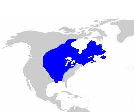 New France in North America