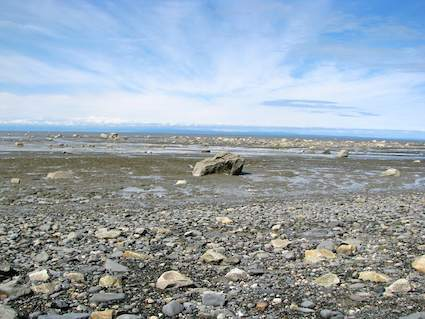 Famous Cook Inlet Tides